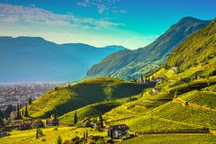 Les vignobles regardent en Santa Maddalena Bolzano Trentino Alto Adige S photos stock