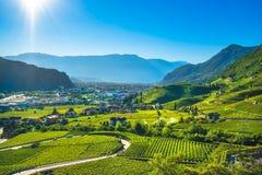 Les vignobles regardent en Santa Maddalena Bolzano Trentino Alto Adige S photographie stock
