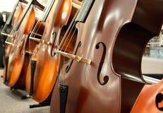 Les violoncelles photographie stock