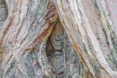 Les visages découpés d'Angkor Thom, Cambodge photos libres de droits