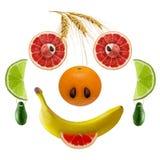 Les visages heureux des fruits frais Images libres de droits