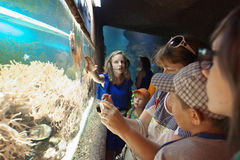 Les visiteurs dans l'aquarium se tiennent à l'aquarium avec l'espèce marine Images stock