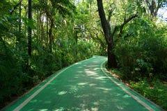 Les voies pour bicyclettes dans la putréfaction Fai de parc de Vachirabenjatas se garent images stock
