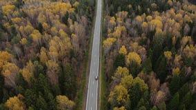 Les voitures conduisent sur une route goudronnée par la forêt d'automne banque de vidéos