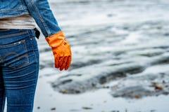 Les volontaires utilisent des jeans et de longues chemises gainées et portent les gants en caoutchouc oranges pour rassembler des photographie stock