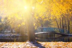 Les vues de l'automne se garent avec les feuilles jaunes sur la neige dans les rayons du soleil et le pont de rivière Photographie stock libre de droits