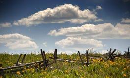 Les Wildflowers et la clôture du bois rencontrent le ciel d'éblouissement dans le Colorado Image libre de droits