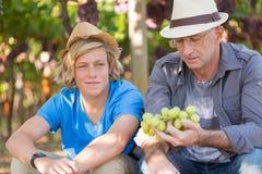 Les Winemakers engendrent et fils dans le vignoble images stock