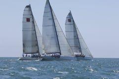 Les yachts concurrencent en Team Sailing Event photographie stock libre de droits