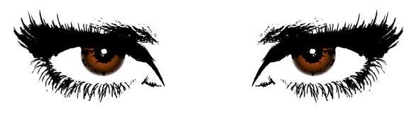 Les yeux bruns des femmes illustration de vecteur