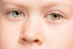 Les yeux de l'enfant Image libre de droits