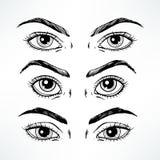 Les yeux des femmes de croquis illustration libre de droits