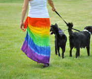 Lesbian female walking her dogs. Royalty Free Stock Images