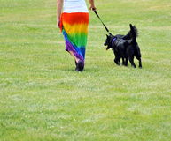 Lesbian female walking her dogs. Royalty Free Stock Image