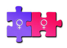 Lesbian symbols. Female and female sex symbols on connected puzzle pieces on white background Stock Illustration