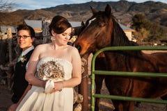Lesbijska panna młoda z partnerem i koniem Zdjęcia Royalty Free
