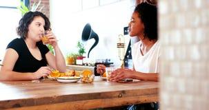 Lesbisch paar die met elkaar interactie aangaan terwijl het hebben van ontbijt stock footage