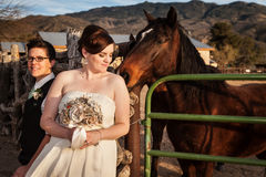 Lesbische Braut mit Partner und Pferd Lizenzfreie Stockfotos