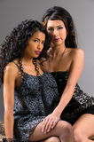 Lesbische Speelsheid Royalty-vrije Stock Foto's