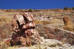 Lesbos Nationalpark lizenzfreie stockfotografie