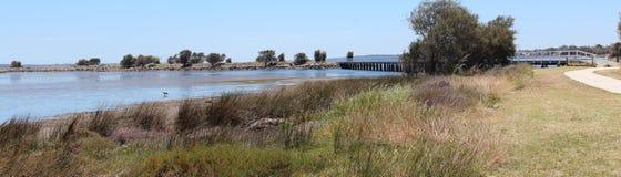 Leschenault出海口Bunbury西方Aust全景  库存图片