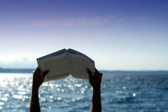 Lesen auf dem Strand stockfotos