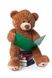 Lesen des Bären mit Ausschnittspfad Stockfotos