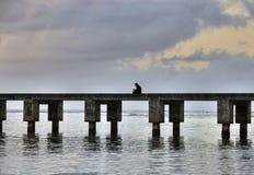 Lesen am Pier. Lizenzfreies Stockfoto