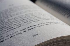 Leseseite 304 Lizenzfreie Stockbilder