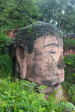 Leshan dafo head. In chengdu Leshan Sichuan Royalty Free Stock Photos