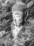 Leshan Giant Buddha. Dafo, UNESCO World Heritage site, Le Shan City, Sichuan, China, in black and white Stock Images