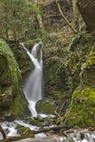 Leshnishki Waterfall in deep forest, Belasitsa Mountain Royalty Free Stock Photos