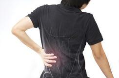 Lesione del muscolo della spina dorsale fotografie stock libere da diritti