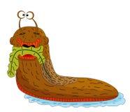 Lesma dos desenhos animados que come a vegetação em um fundo branco Imagens de Stock Royalty Free