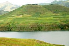 Lesothiskt landskap Arkivbild