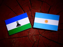 Lesotho flag with Argentinian flag on a tree stump isolated Royalty Free Stock Image