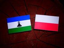 Lesotho flag with Polish flag on a tree stump isolated. Lesotho flag with Polish flag on a tree stump royalty free illustration