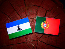 Lesotho flag with Portuguese flag on a tree stump isolated. Lesotho flag with Portuguese flag on a tree stump royalty free illustration