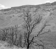 Lesotho Lesotho krajobraz królestwo, oficjalnie zdjęcia royalty free