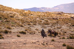 Lesotho man and horse Stock Image