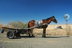 Lesotho Roads Horse Cart. Horse transport  is common in the rural areas of Southern Africa Royalty Free Stock Photos