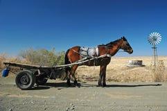 Lesotho-Straßen-Pferden-Wagen Lizenzfreie Stockfotos