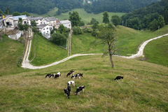 Lessinia (Veneto, italy), pastures Royalty Free Stock Photos