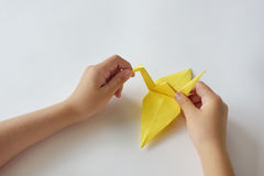 Lesson of origami. Children`s hands do origami from colored paper on white background Royalty Free Stock Photography