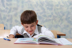 Lesson. Schoolboy is reading Stock Images