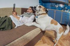 Lesung der jungen Frau von ihrer Tablette und von ihrem Hund Lizenzfreie Stockfotografie