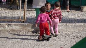 LESVOS, GRECIA - 5 DE NOVIEMBRE DE 2015: Niños del refugiado en el puerto de Mytilene almacen de metraje de vídeo