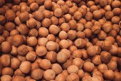 leszczyny Świeży organicznie filbert Dokrętki makro- knedle tła jedzenie mięsa bardzo wiele zdjęcie stock