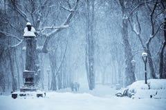 Free Let It Snow Stock Photos - 21690443