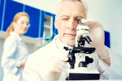 Positive minded researcher looking at sample under microscope. Let me see. Joyful mature gentleman smiling while working in a lab and examining a sample under a Stock Photography